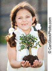 preoccupare, tree), invironment, (focus, bambino