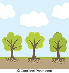 primavera, albero, natura