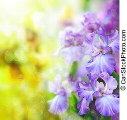 primavera, astratto, fiore, fondo