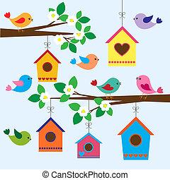 primavera, birdhouses