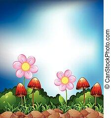 primavera, campo