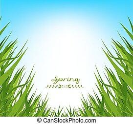 primavera, erba, fondo, fresco