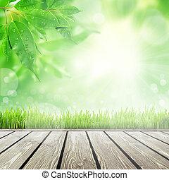 primavera, erba, fondo, natura