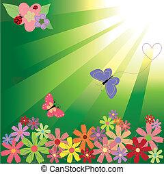primavera, fiori, farfalle, fondo, spia verde, &