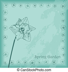 primavera, giardino