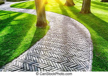 primavera, pavimentato, parco, sentiero