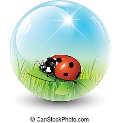 primavera, sfera
