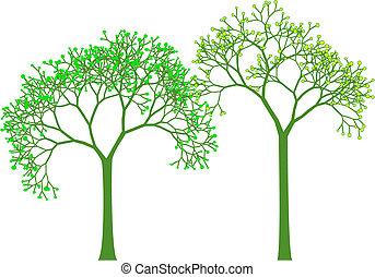 primavera, vettore, albero