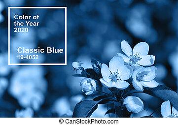 principale, mela, classico, tendenza, primavera, colorare, blue., 2020, fiori