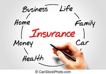 processo, assicurazione, ciclo