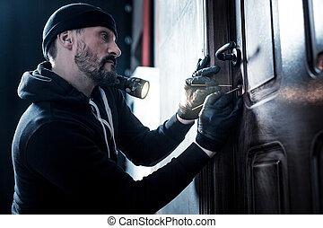 professionale, ladro, aprindo porta