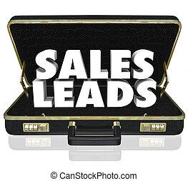 prospettive, cartella, clienti, vendite, piombi, parole, nuovo, opportunità