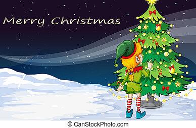 prospiciente, elfo, albero, scheda natale