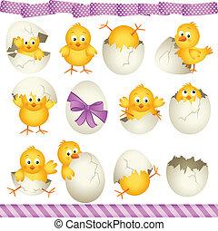 pulcini, uova, pasqua