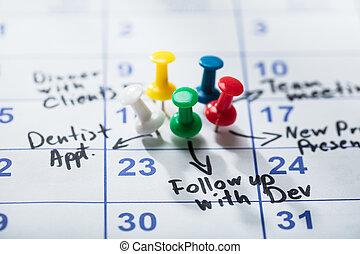 pushpins, appiccicato, calendario, colorito
