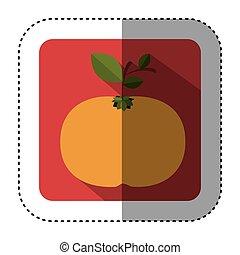 quadrato, colorito, adesivo, mandarino, frutta, bottone