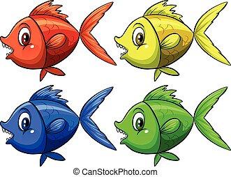 quattro, fish