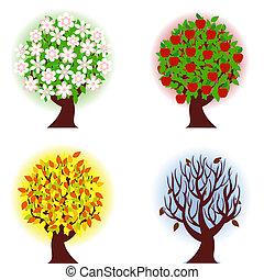 quattro, mela, stagioni, albero.