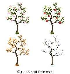 quattro stagioni, arte, albero