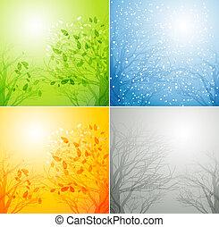 quattro stagioni, differente, albero