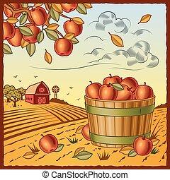 raccogliere, mela, paesaggio