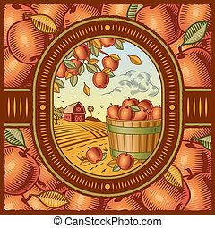 raccogliere, mela