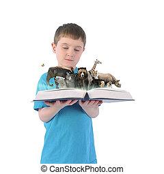 ragazzo, animali, fondo, libro, presa a terra, selvatico, bianco