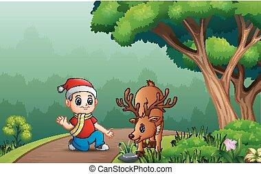 ragazzo, cervo, foresta, poco