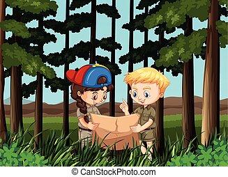 ragazzo, lettura ragazza, foresta, mappa
