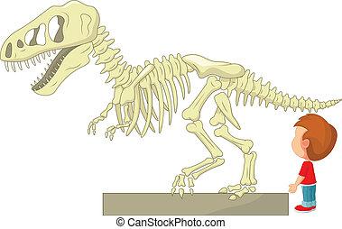 ragazzo, m, scheletro, dinosauro