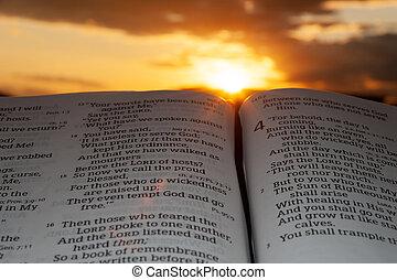 raggi sole, 4:2., nubi, fondo, santo, malachi, bibbia, aperto, tramonto, evidenziato