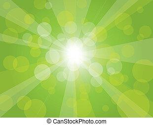 raggi sole, sfondo verde, illustrazione