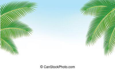 rami, palma, contro, blu, sky.