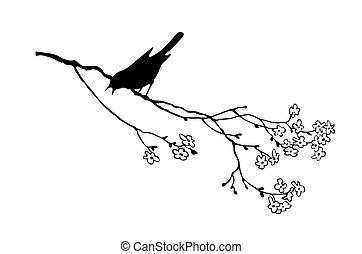 ramo, albero, uccello, vettore, silhouette