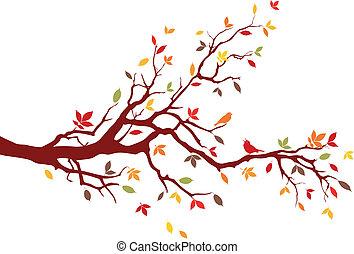 ramo, autunno