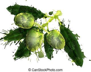ramo, colorito, albero, schizzi, fondo, fatto, oliva, bianco