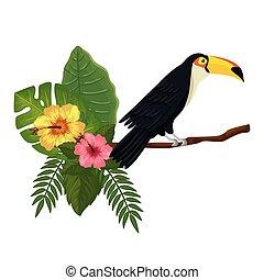 ramo, tucano, mette foglie, fiori