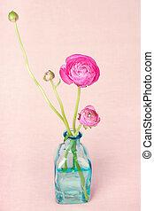 ranunculus, vendemmia, fiori, fondo, vaso
