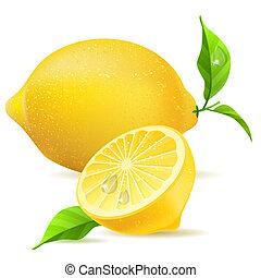 realistico, foglie, limone, mezzo
