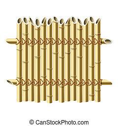 recinto, bambù
