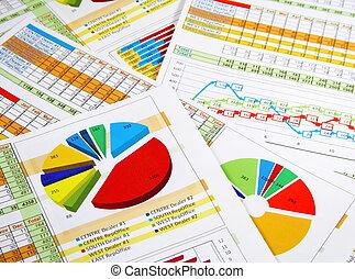 relazione, grafici, annuale, schemi