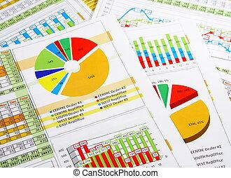 relazione, grafici, annuale, tabelle