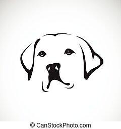 retriever), animals., vettore, fondo, bianco, head(labrador, cane, pet.