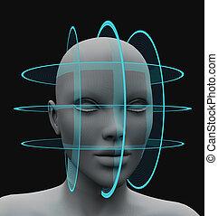 riconoscimento, scansione, senza, capelli, facciale, sferico
