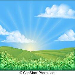 rimbombante, campo, colline, fondo, sole