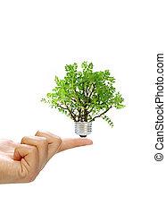rinnovabile, concetto, energia