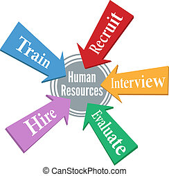 risorse, persone, impiegato, umano, assunzione