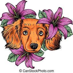 ritratto, cane, spaniel, testa fiore, vettore, illustration., wreath.