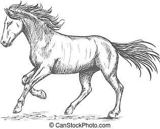 ritratto, cavallo, stmping, zoccolo, prancing