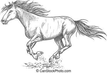 ritratto, correndo, cavallo, giunco, schizzo
